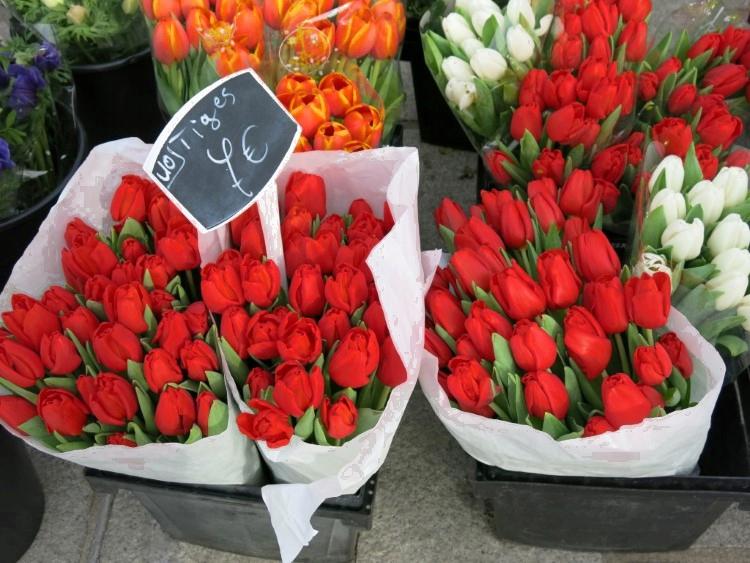 Blumen für gute Texte